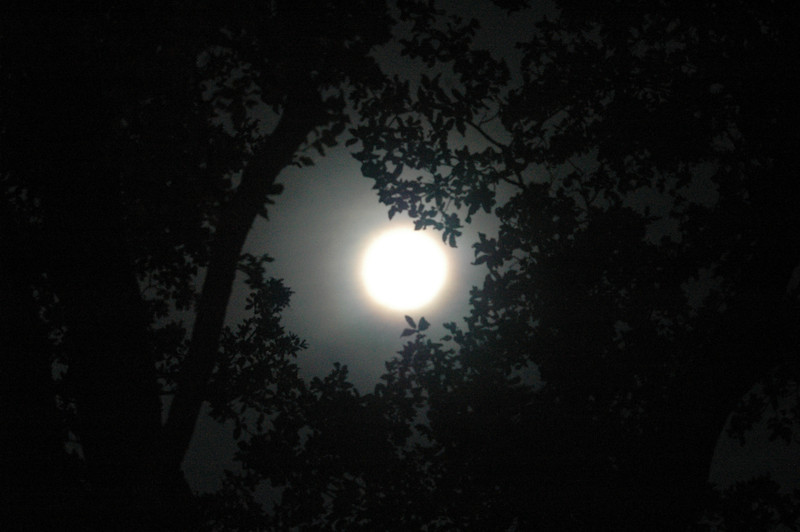 April 2012 Full moon over Plano, Texas