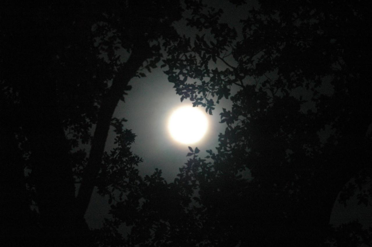 April 2012 Full moon over Plano, Texas