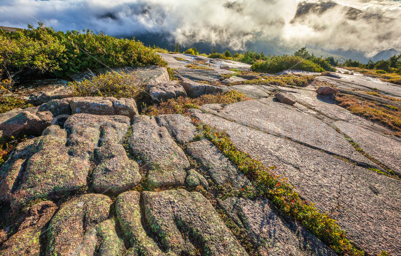 Maine - Acadia - Sojourn - D1-C2-2 - 72 ppi