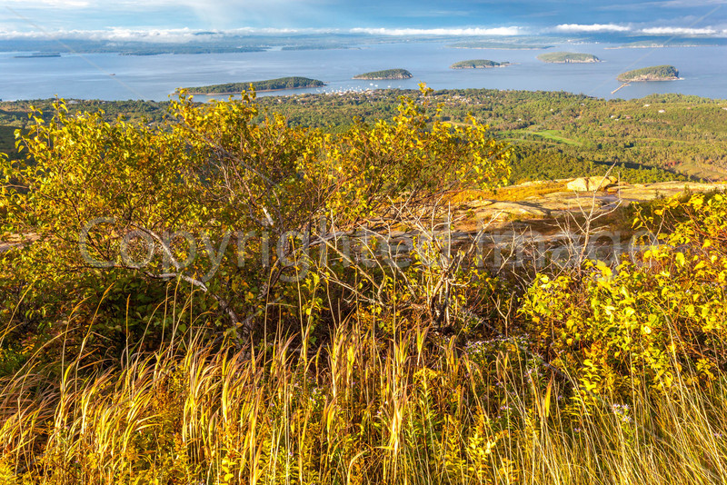 Maine - Acadia - Sojourn - D1-C2-0010 - 72 ppi