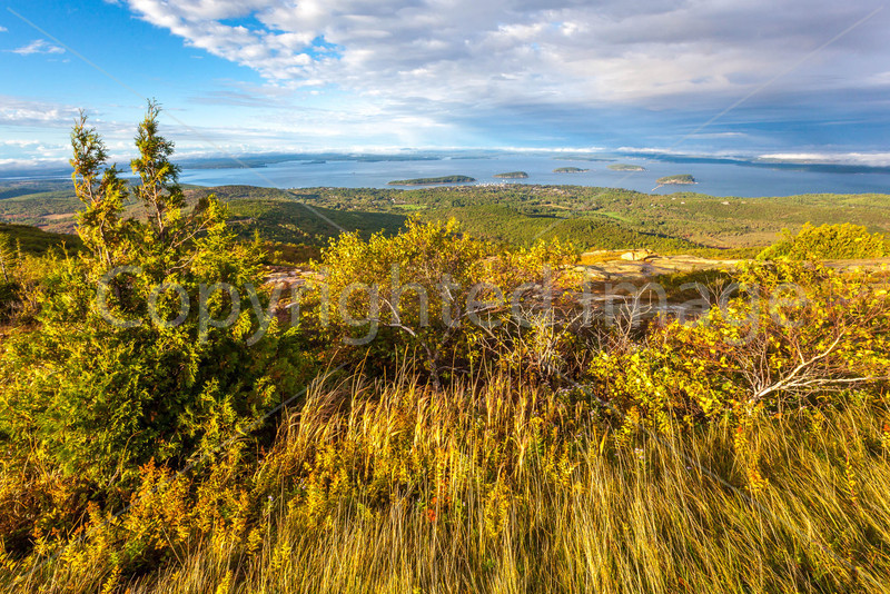 Maine - Acadia - Sojourn - D1-C2-0007 - 72 ppi