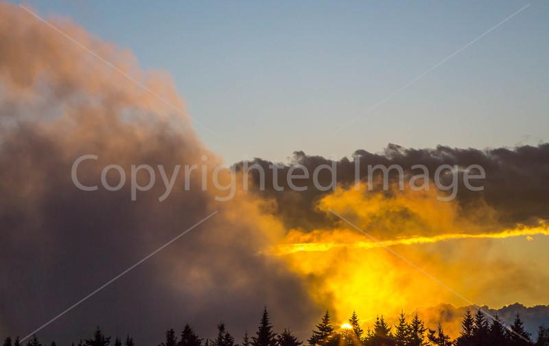 Maine - Acadia - Sojourn - D1-C1-0100 - 72 ppi