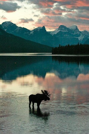 Sunrise On Maligne Lake