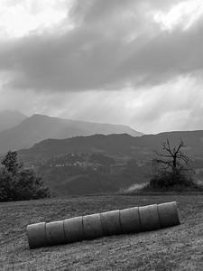 Round Bales - Near Ginepreto, Castelnovo ne' Monti, Reggio Emilia, Italy - July 9, 2011