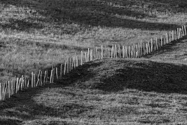 Fence - Scalucchia, Collagna, Reggio Emilia, Italy - June 1, 2020