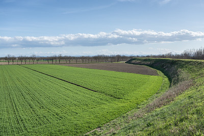 From the Levee - Near Caselle, Crevalcore, Bologna, Italy - March 19, 2013