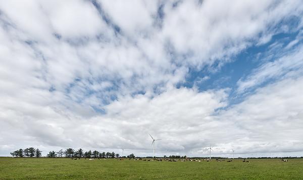 Wind Turbines - Skærbæk, Denmark - August 19, 2021