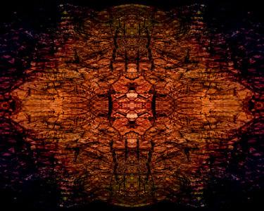 Wood Grain Mandala