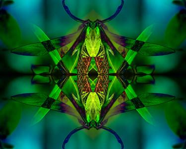 Green Mantis Mandala