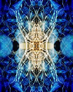Roots Mandala