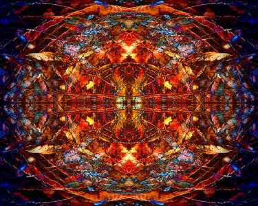 Fern Mandala. 3/3  We need strong medicine today.