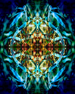 Blue Grasses Winter Mandala