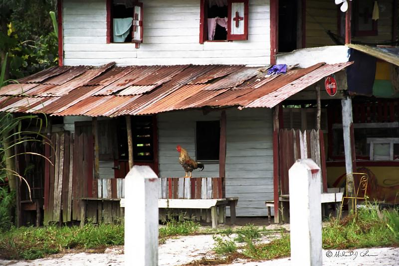 Guyana Country House