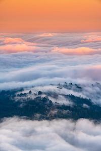 Mount Tamalpais,Tam,fog,Marin,Bay Area
