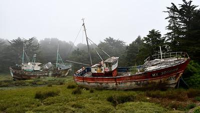 Cimetières de bateaux L'Abbesse Plougasnou Bretagne Frankrijk