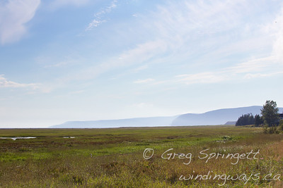 Marshes overlooking the Bluffs of the Bay of Fundy