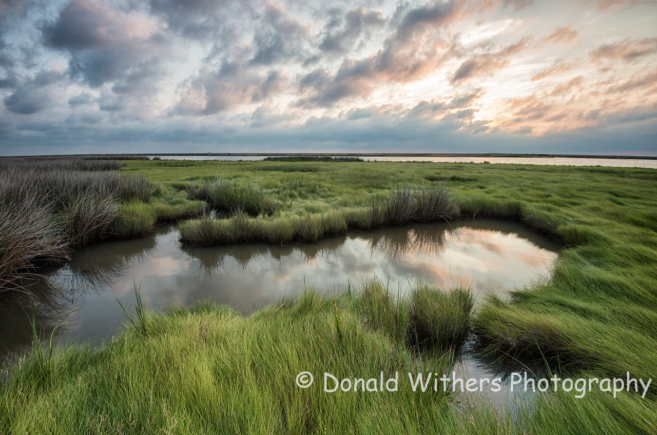 Morning on the Marsh