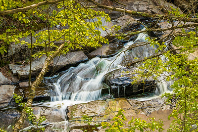 Framed Rapids