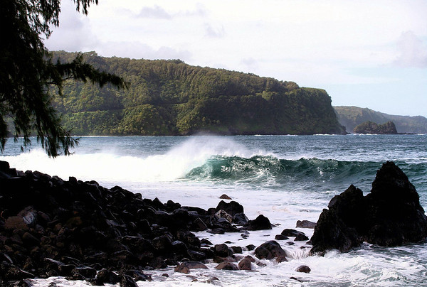 Wave breaking on the rocky northwestern coast of the Ke'anae Peninsula - adjacent to the needle-like leaves of an Ironwood Tree - across the Pacific Moana (ocean) to - Moiki Point and Keopuka Rock (islet or small rock island) - Northeast island region