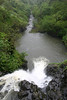 Makapi'pi Falls - dropping 60 ft. (18 m) vertically - and the rainforest along the stream below - Northeast island region