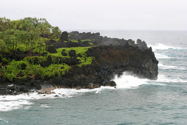 Across Pa'iloa Bay to Pukaulua Point - to the Hala Trees (Thatch Screwpine) and Naupaka (sea lettuce), growing at Pukaulua Point - Northeast island region