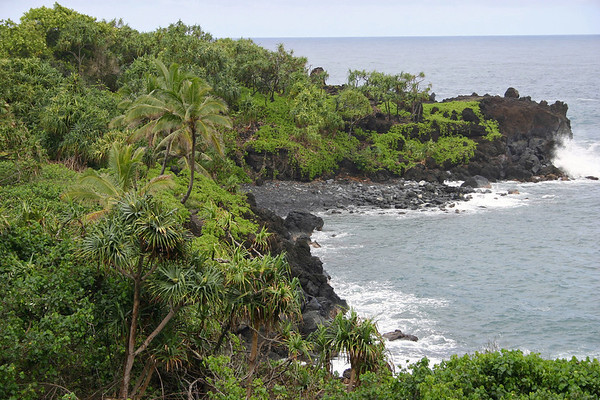 Beyond the volcanic shoreline of Pa'iloa Bay - lined with Hala Trees (Thatch Screwpine), Coconut Palms, and Naupaka (sea lettuce) - out to Pukaulua Point, the northern tip of the bay - Northeast island region