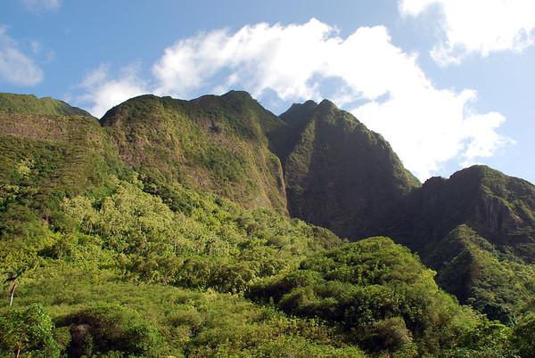 The vegetated volcanic walls of the Pu'u Kukui Crater - Mauna Kahalawai Volcano - Iao Valley State Park - Central Maui region