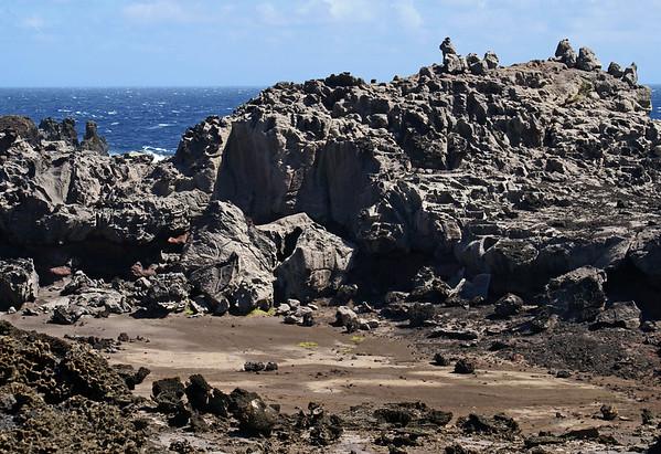 Trek to the Nakalele Blowhole - West Maui region