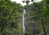 Waimoku Falls, dropping about 400 ft. (122 m) down the volcanic rock cliff - the Pipiwai Stream - Haleakala National Park - Southeast island region