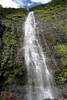 About 400 ft. (122 m) up the Waimoku Falls - Haleakala National Park - Southeast island region