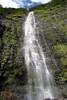 About 400 ft. (122 m) up the Waimoku Falls - Haleakala National Park - Southeast island region