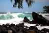 Pacific Ocean nalu (wave) crashing upon the basaltic igneous rock coastline of the Ka'enae Peninsula - with the pine-like leaves of an Ironwood Tree (Casuarina equisetifolia) hanging from above -  Northeast island region