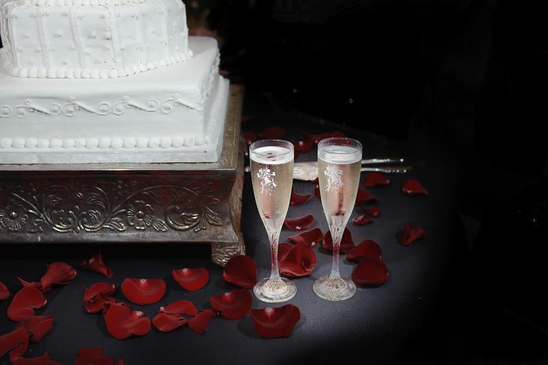 20091003_Robinson_Cole_Wedding_0733