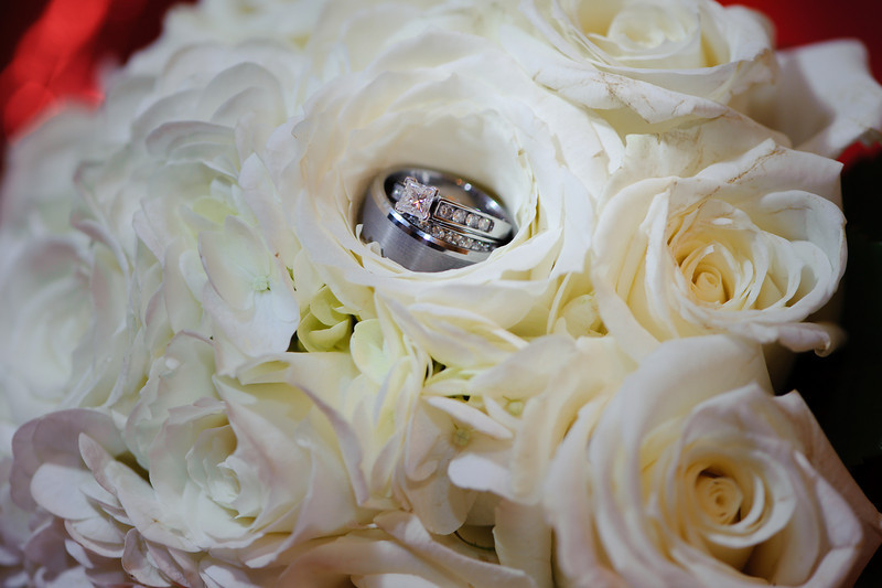 20091003_Robinson_Cole_Wedding_1196