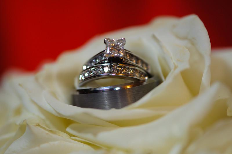 20091003_Robinson_Cole_Wedding_1202