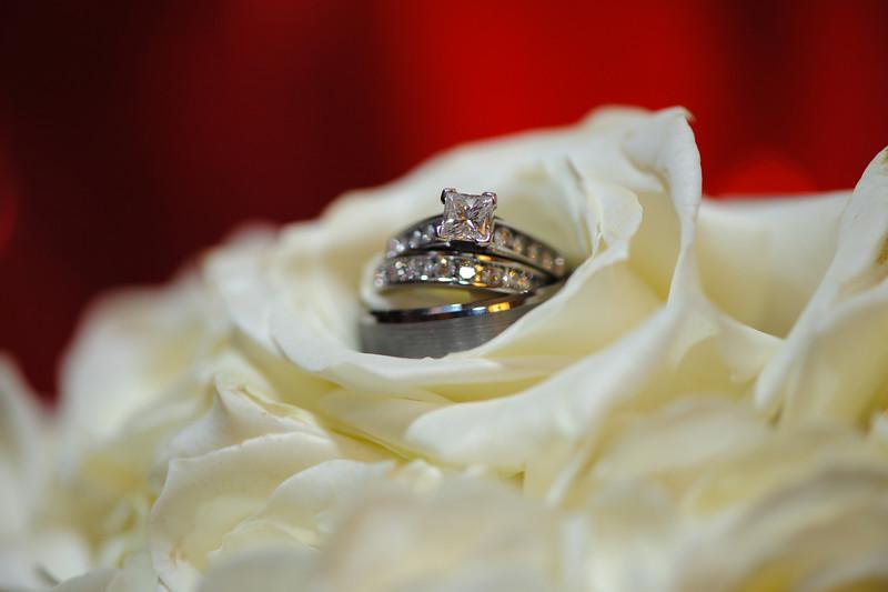 20091003_Robinson_Cole_Wedding_1210