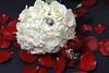 20091003_Robinson_Cole_Wedding_1288