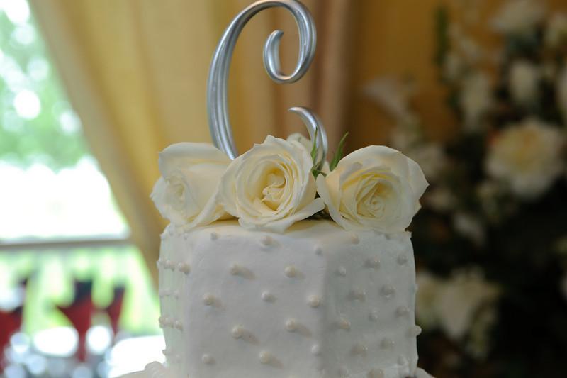20091003_Robinson_Cole_Wedding_0075