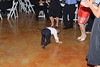 20091003_Robinson_Cole_Wedding_0966
