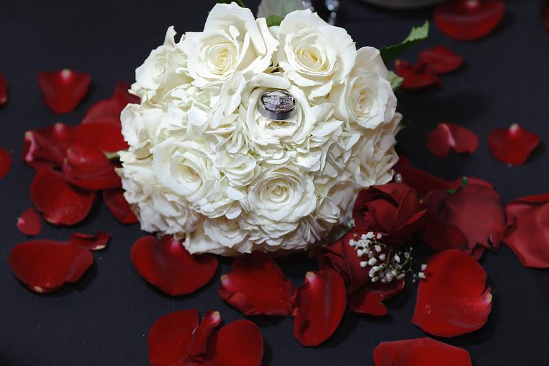 20091003_Robinson_Cole_Wedding_1290