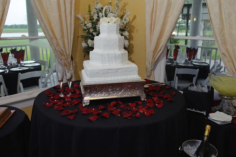 20091003_Robinson_Cole_Wedding_0449