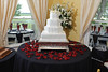 20091003_Robinson_Cole_Wedding_0452