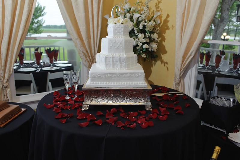 20091003_Robinson_Cole_Wedding_0451