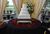 20091003_Robinson_Cole_Wedding_0451