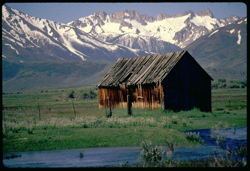 Sierra Cabin 1993