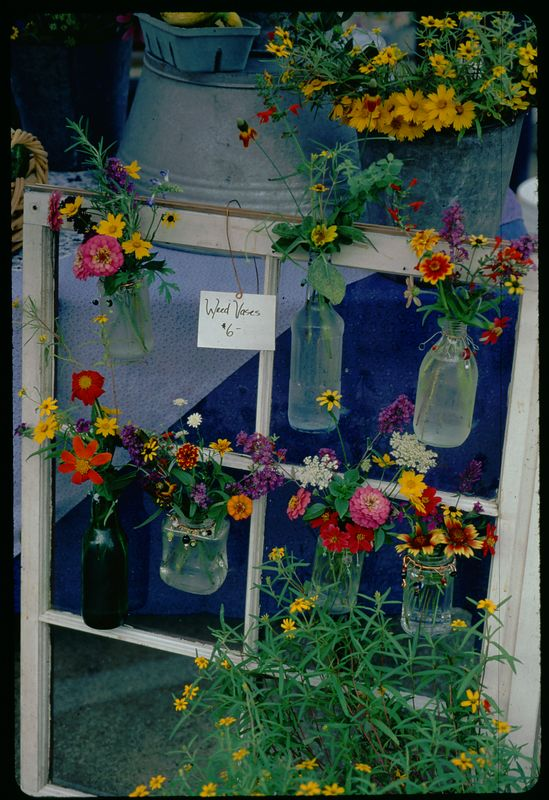 Flower Window at Dr. Pepper Place 2003