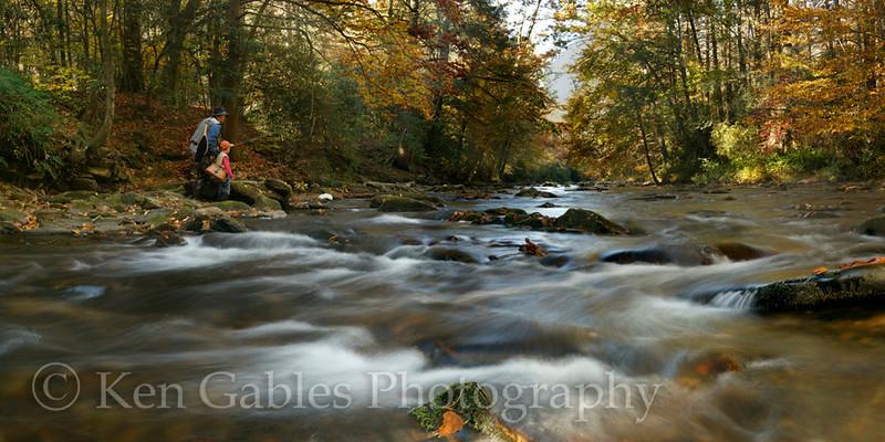 Davidson River, Pisgah National Forest, Transylvania County North Carolina