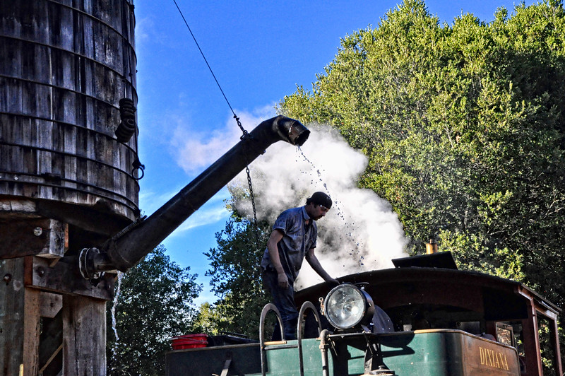 Renewing Steam Power - Steam train in the Redwoods Forest, California