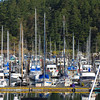 Morning on the docks in Friday Harbor, WA