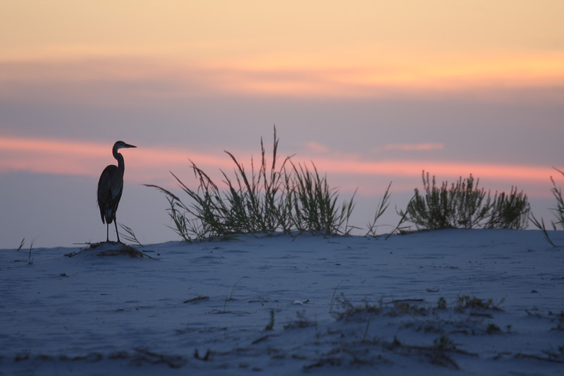 Sunset at the pass at Fort Pickens - Pensacola Beach, Florida